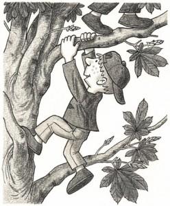 Die Jungen klettern im Kastanienbaum