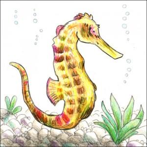 Seepferdchen (Buntstifte)
