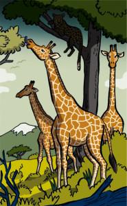 Drei Giraffen auf der Weide