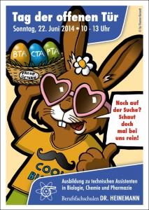 Plakat für eine Braunschweiger Berufsfachschule
