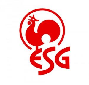Redesign des Logos der ESG, Braunschweig