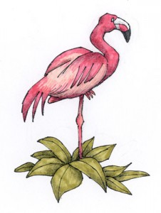 Zeichnung für den Titelvorspann einer Naturfilm-Parodie (Copic-Fine-Liner, Marker, Schwarzstift)